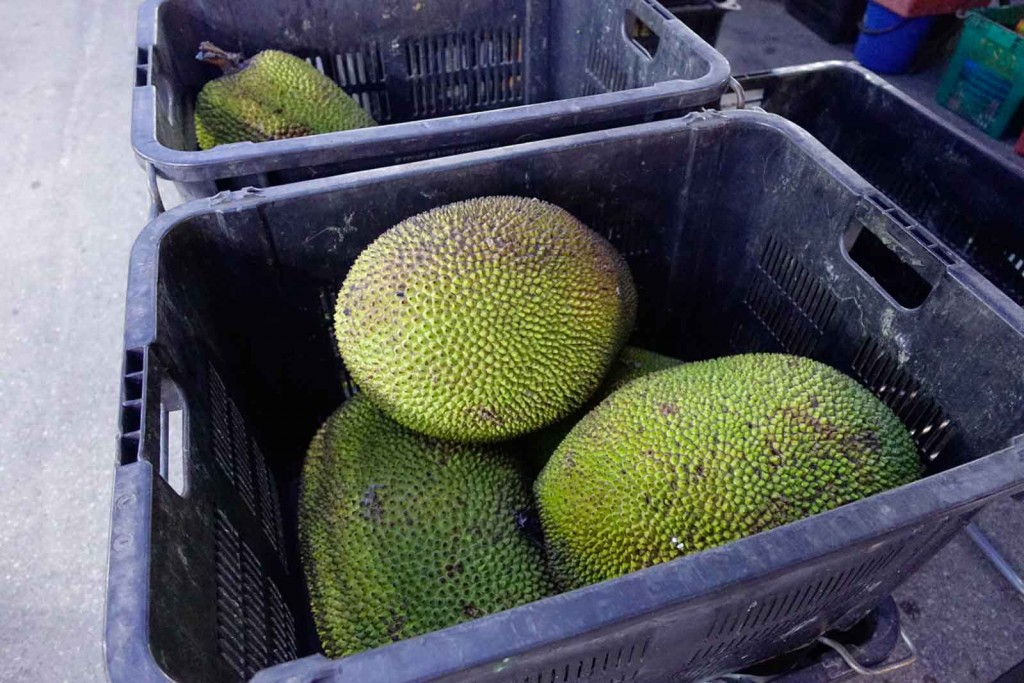 Jackfrucht in der Stiege