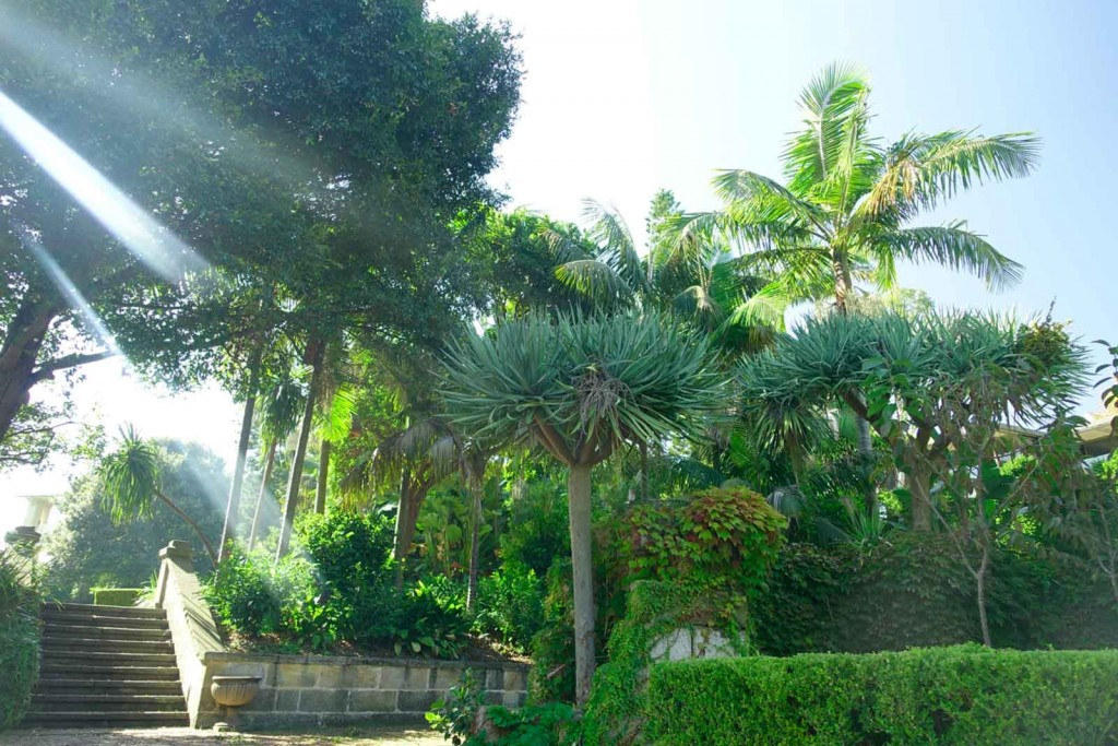 Kleiner Park in Sydney, dessen Name ich vergessen habe